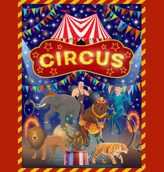 animals acrobat and strongman on circus arena vector image