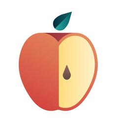 Apple gradient vector