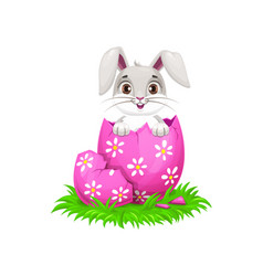 Bunny cartoon animal with easter holiday egg vector
