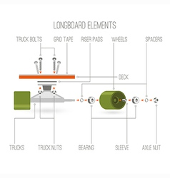Longboard elements infographic vector image
