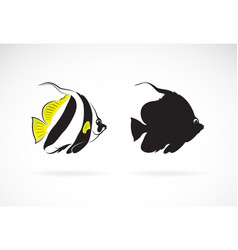 schooling bannerfish heniochus diphreutes on vector image