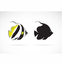 Schooling bannerfish heniochus diphreutes vector