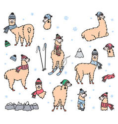 Set of cute lama in winter hat and scarf vector