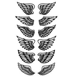set of wings isolated on white background design vector image