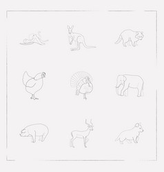 set of zoo icons line style symbols with turkey vector image
