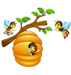 The bees fly out of a beehive hanging from a tree vector image