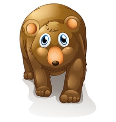 A brown bear vector image