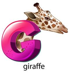 A letter g for giraffe vector