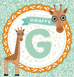 ABC animals G is giraffe Childrens english vector image vector image