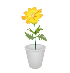 A Cosmos Flowers in A Flower Pot vector