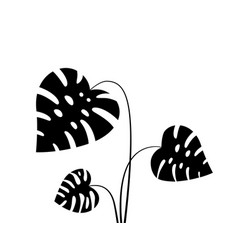 black tropical leaves isolated on white vector image