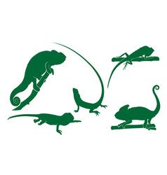 chameleon iguana lizard animal silhouette set vector image