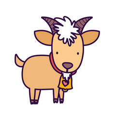 Goat bovine with bell farm animal cartoon vector