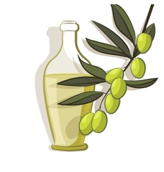 olive branch background vector image