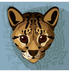 A of an ocelots face vector image