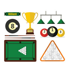 billiard equipment in flat style on white vector image