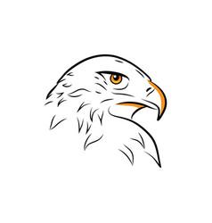 eagle head outline vector image