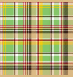 fabric texture plaid green madras seamless pattern vector image