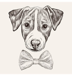 Sketch jack russell terrier dog with bow tie hand vector