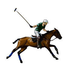 Equestrian polo with a jockey from splash vector