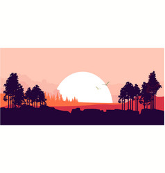 Nature at sunset vector