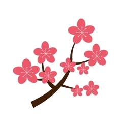Realistic sakura japan cherry branch with blooming vector