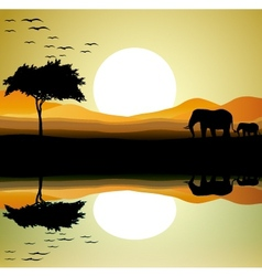 safari of elephant silhouette vector image