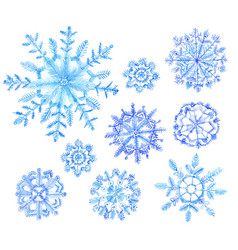 Set of snowflakes new year vector