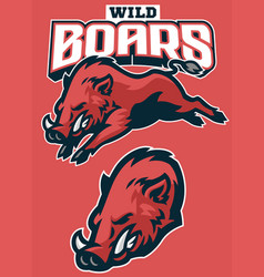 Set wild boar sport mascot vector