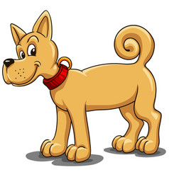 small red dog with a red collar in a cartoon style vector image
