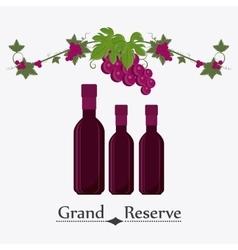 Wine shop design vector