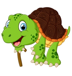 elderly tortoise vector image