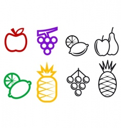 fruit symbols vector image vector image