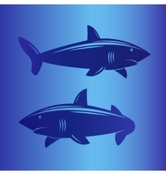 Two sharks in deep blue sea vector image