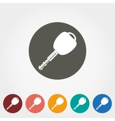 Key icon Flat vector image vector image