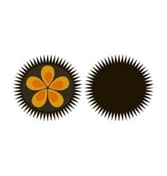 Sea urchin flat icon logo aquatic natural food vector image