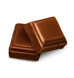Chocolate pieces vector image vector image