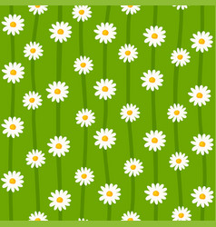 Daisy seamless pattern ditsy floral print with vector