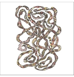 Hand drawn Doodle Worms vector image