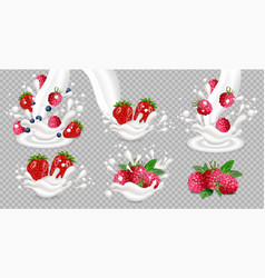 milk or yogurt splash with berry fruits vector image
