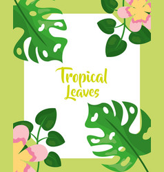 tropical leaves background nature botanical vector image