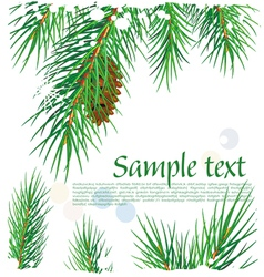 framework with pine branches vector image vector image
