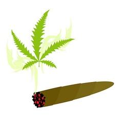 Cigarette with marijuana Knabis sheet and smoke vector image