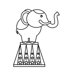 circus elephant isolated icon vector image
