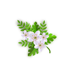 floral composition - branch of vector image