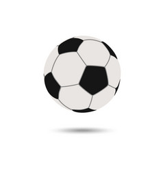 football icon soccerball vector image