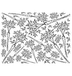 Hand drawn of green hamburg parsley on white backg vector
