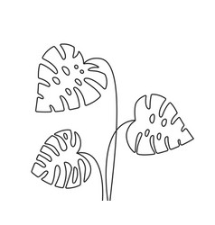 linear minimal black tropical leaves vector image