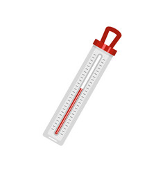Old thermometer icon flat style vector