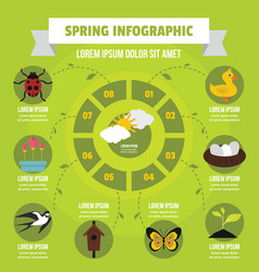 Spring infographic concept flat style vector